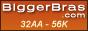 Shop BiggerBras.com