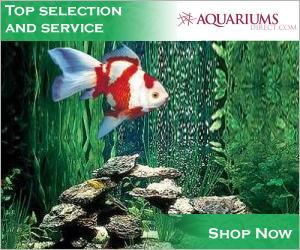 Shop AquariumsDirect.com Today!
