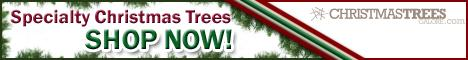 Shop Christmas Trees Galore Today!