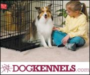 Shop DogKennels.com Today!