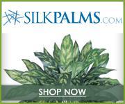 Shop for Silk Palms & Patio Plants