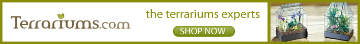 Shop Terrariums.com Today!