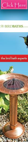 Shop BirdBaths.com Today!