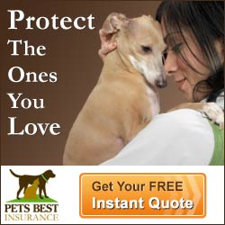 Saving Money on Your Pets Veterinary Care