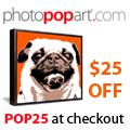 Shop PhotoPopArt.com Today!