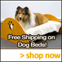 Dog Bed Superstore.com coupons