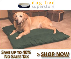 Shop at the Dog Bed Superstore Today!