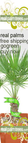 Shop RealPalmTrees.com Today!