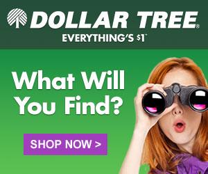 Dollar Tree 2015