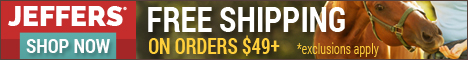 $49 Min Order for Free Shipping