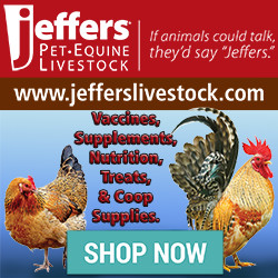 Jeffers Pet 250x250