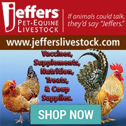 Jeffers Pet 250x250