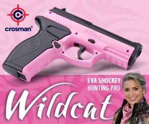 Crosman Wildcat