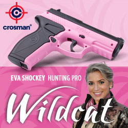 Crosman Wildcat