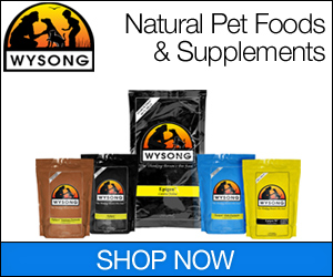 Shop at Wysong.net