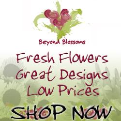 Shop BeyondBlossoms.com Today!