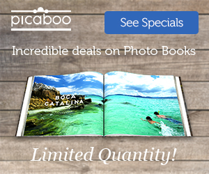 Picaboo Special Promos 2
