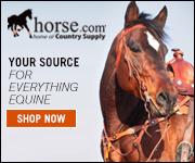Shop at Horse.com!