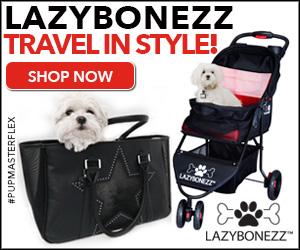 Lazy Bonezz