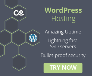 WordPress Hosting with 24/7 expert help