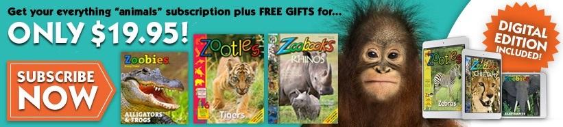 Get Print & Digital Plus Bonus Gifts