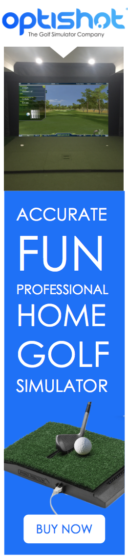 Accurate Fun Professional Golf