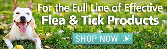 Jeffers Flea and Tick Products