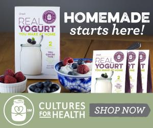 Yogurt Banner 300x250