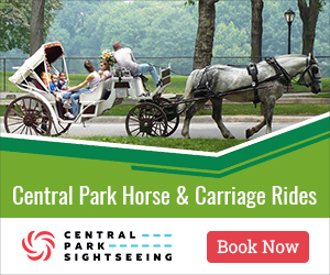 Central Park Horse & Carriage Rides