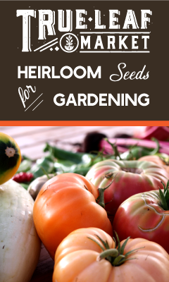 Check out our Heirloom Seeds at True Leaf Market