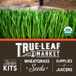 True Leaf Market - Free Shipping on Orders over $45