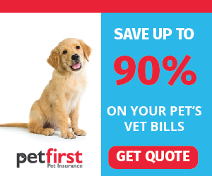 Save up to 90% on your pet's vet bills with PetFirst