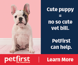 PetFirst Pet Insurance. Insurance for puppies and dogs.