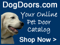 Pet Doors USA - DogDoors.com